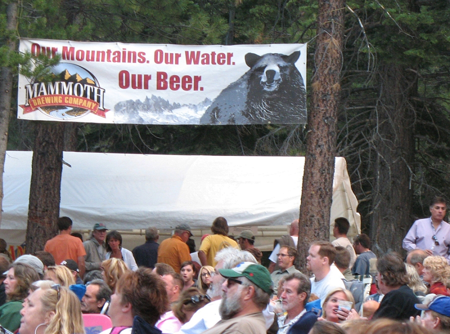 Mammoth beer and bluesapalooa festival