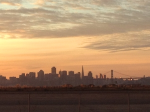 View of San Francisco from Faction Brewing on Alameda Island. Photo by Gail Ann Williams
